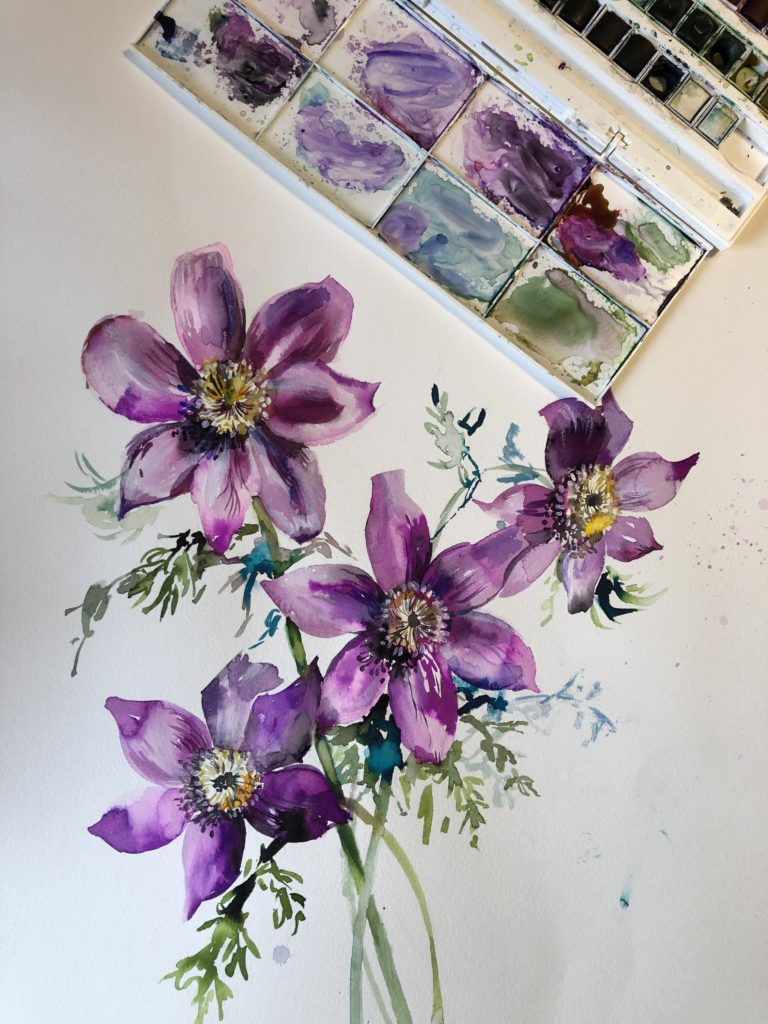 Heathers fantastic watercolour Pasque flower painting